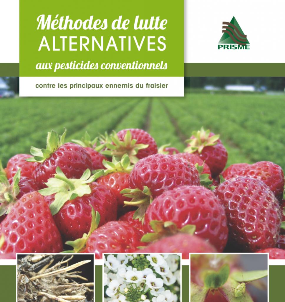 Brochure sur les méthodes alternatives aux pesticides dans le fraisier